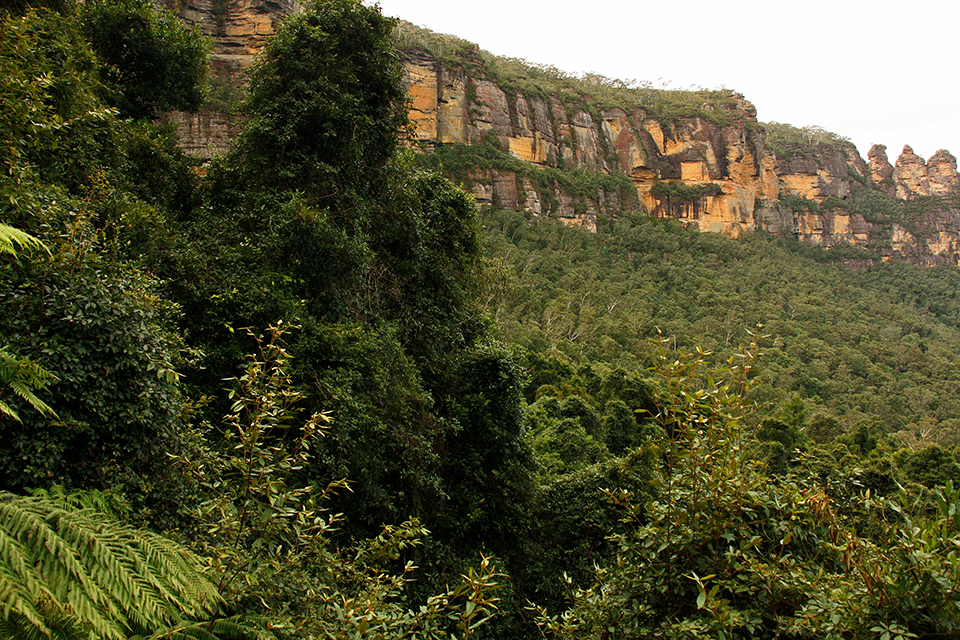 blue-mountains-australie-05