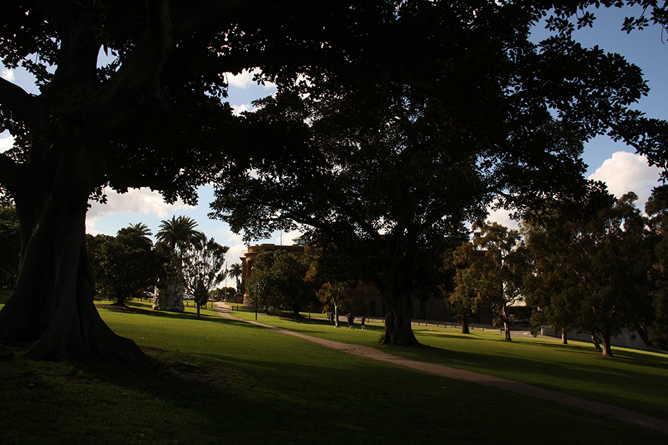 botanic-garden-sydney-australie-01