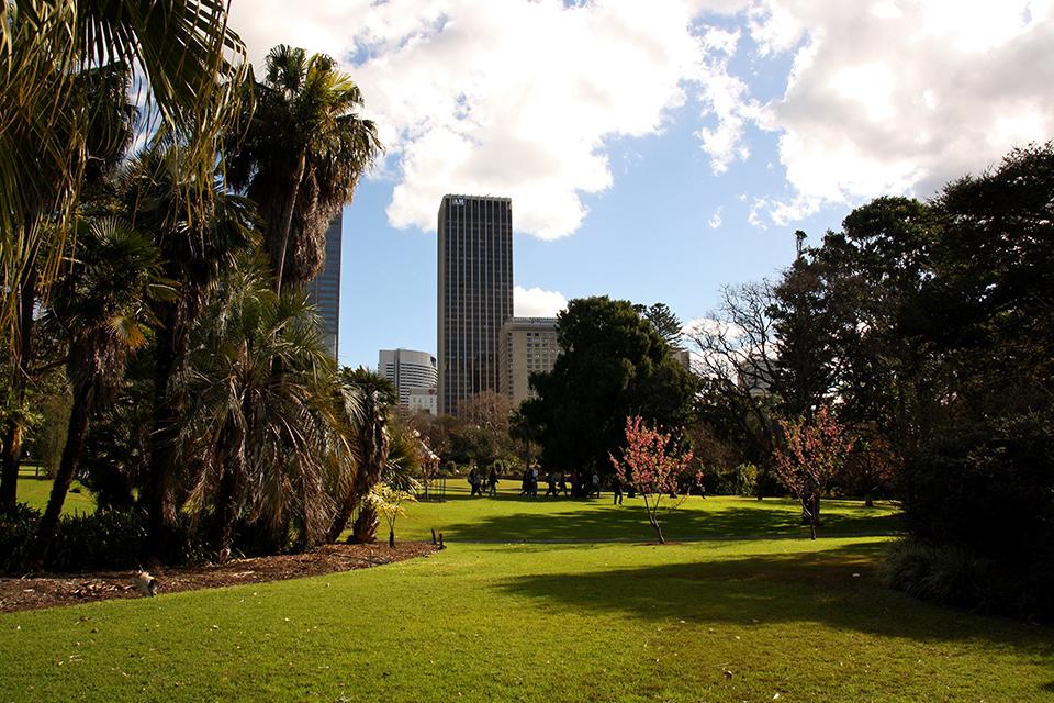 botanic-garden-sydney-australie-05