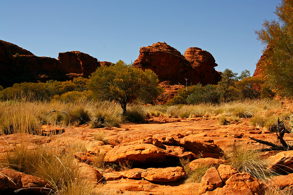 kings-canyon-red-center-australie-08