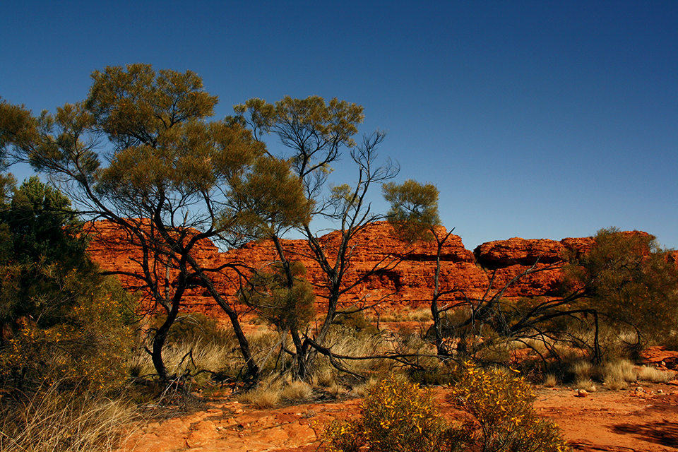 kings-canyon-red-center-australie-10