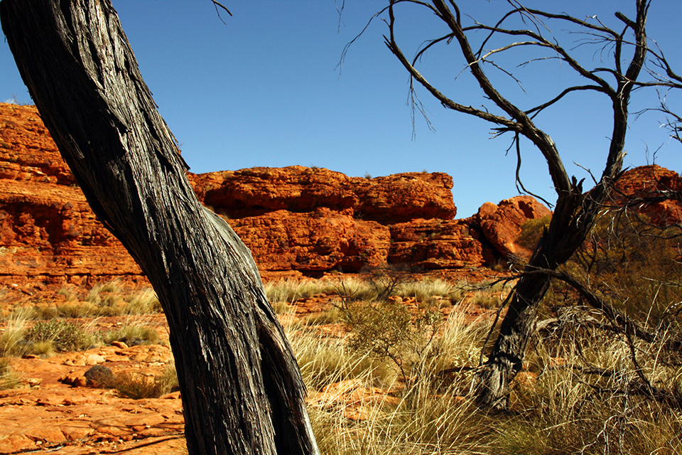 kings-canyon-red-center-australie-12