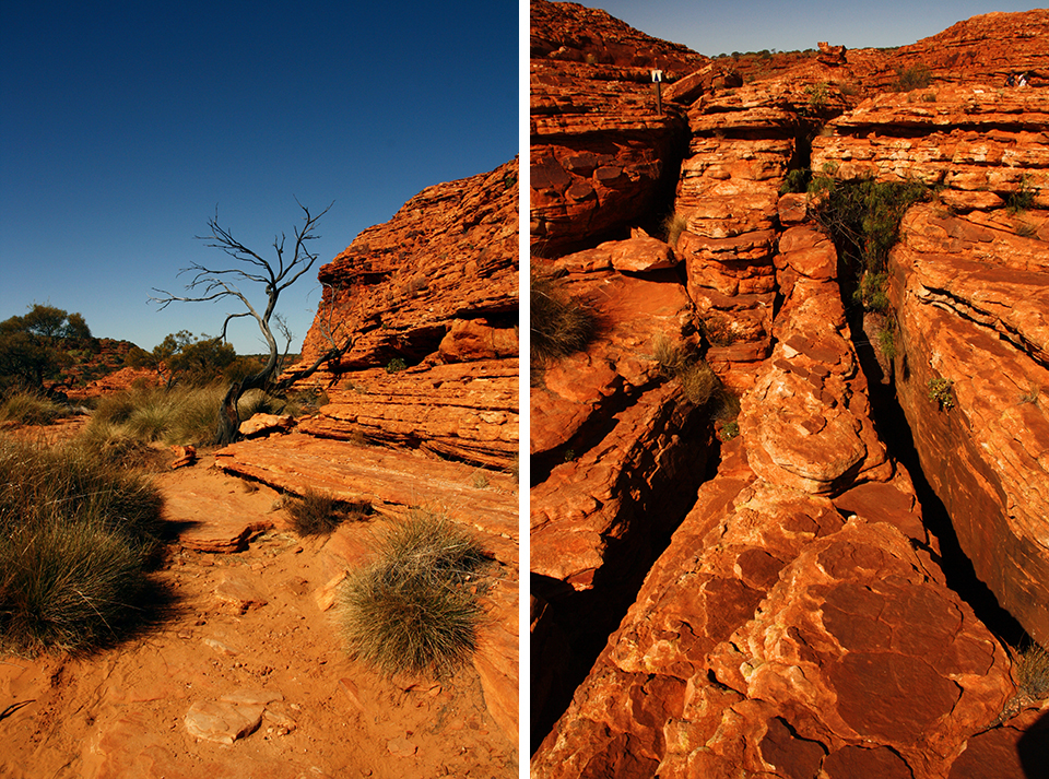 kings-canyon-red-center-australie-25