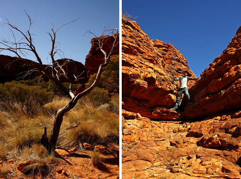 kings-canyon-red-center-australie-26