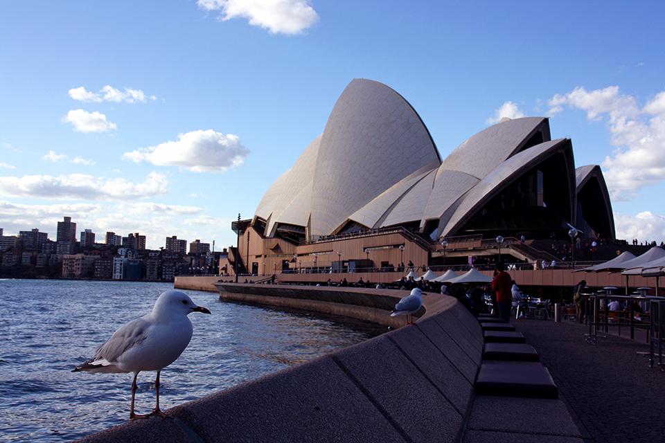 opera-sydney-australie-05