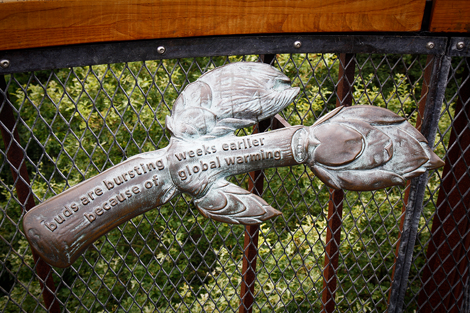 treetop-walkway-kew-gardens-londres-07