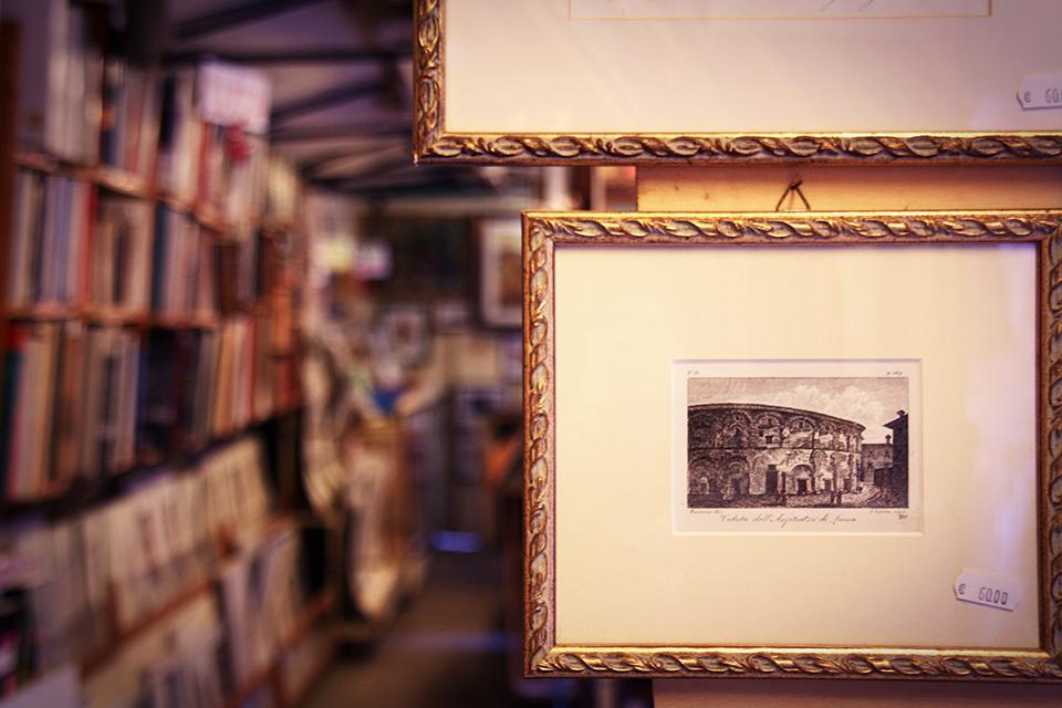 lucques-librairie-03