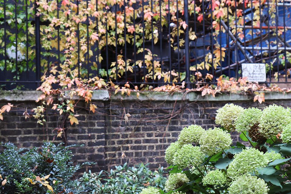 londres en automne