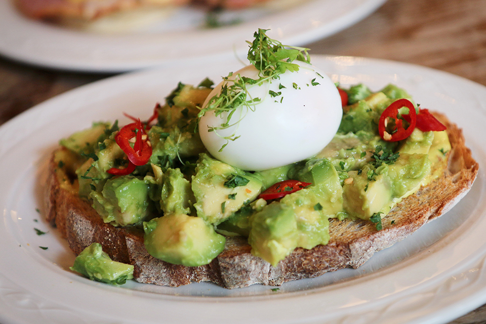 toats-oeuf-avocat-damson-and-co