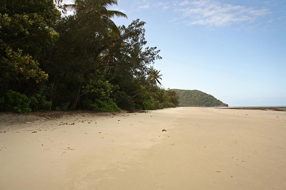cape-tribulation-australie-11