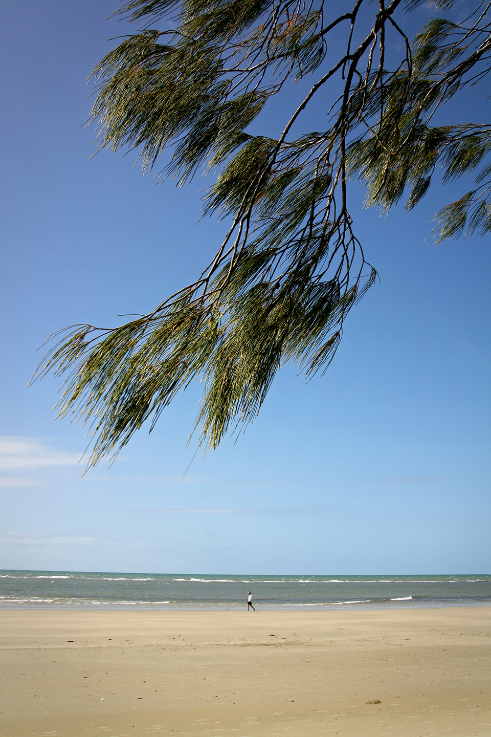 cape-tribulation-australie-30