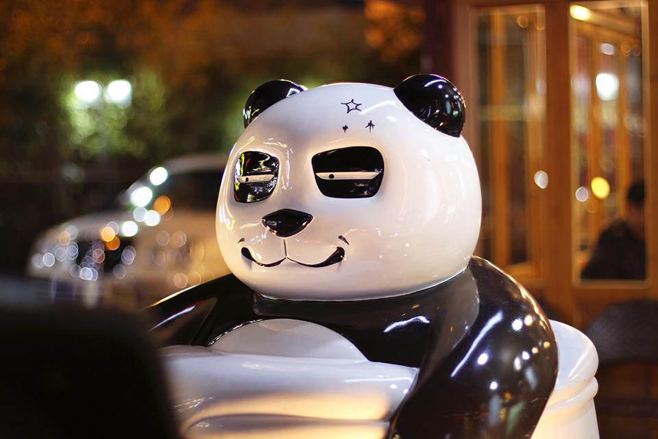 coree busan panda