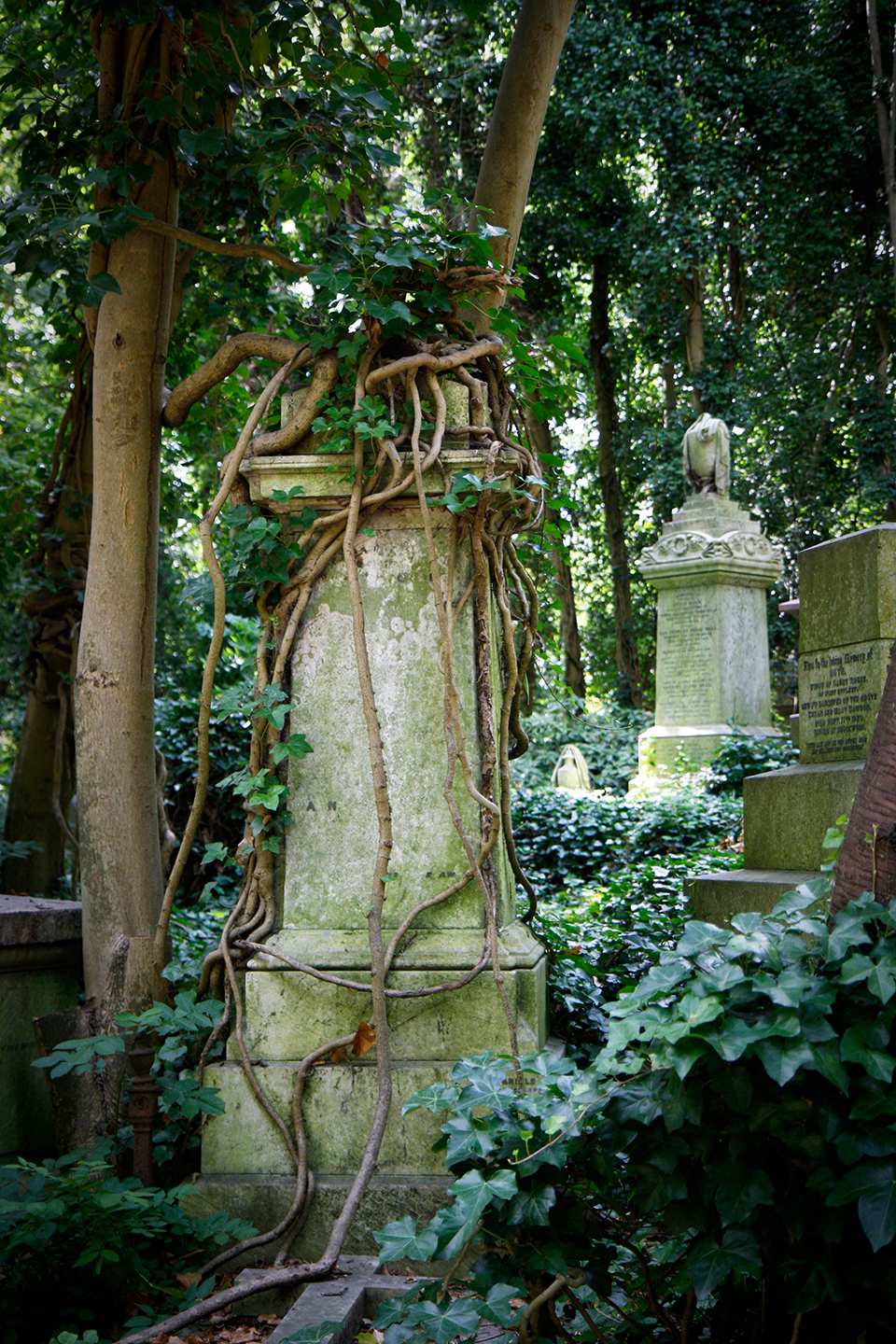 london-highgate-cemetery-west-9223-mod