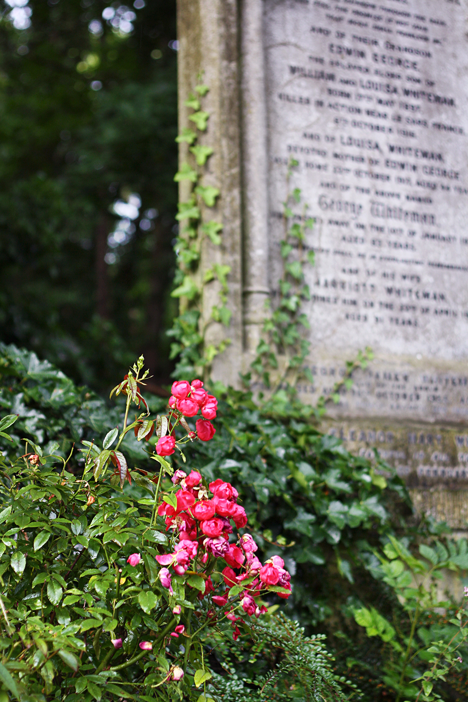 londres-highgate-cemetery-18