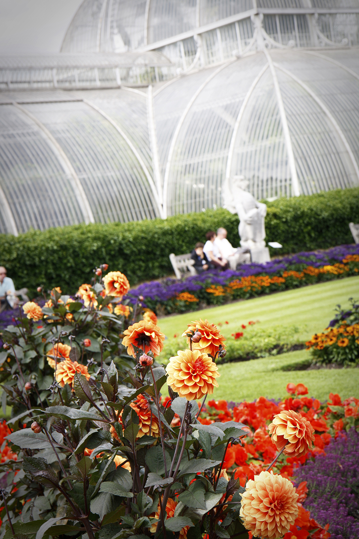 londres-kew-gardens-9396-mod