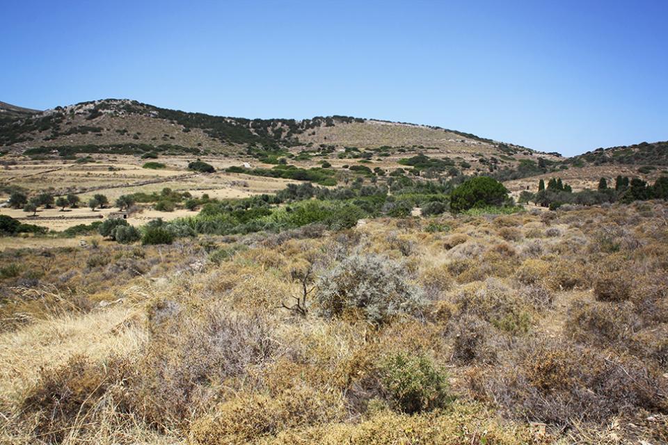naxos-grece-cyclades-35