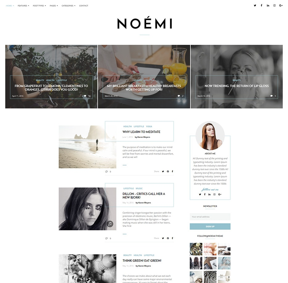 thèmes wordpress noemi